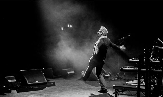 A Momentary Lapse – Robin ince