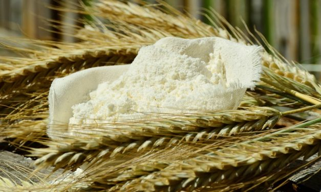 They're Adding Folic Acid to Flour. So What? – Ginny Smith
