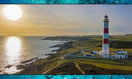 Beacon in the Night – Sea Shambles Advent Day 16