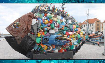 Plastics – Sea Shambles Advent Day 11