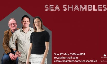 Sea Shambles – Catch Up